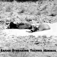 Safari Streaming Techno Minimal — сборник