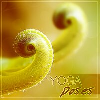Yoga Poses – Relaxation Music, Pilates, Concentration Music, Exercise Songs, Yoga Music — Yoga Music Followers