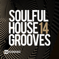 Soulful House Grooves, Vol. 14 — сборник