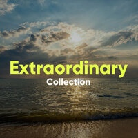 Extraordinary Collection — Tai Chi And Qigong