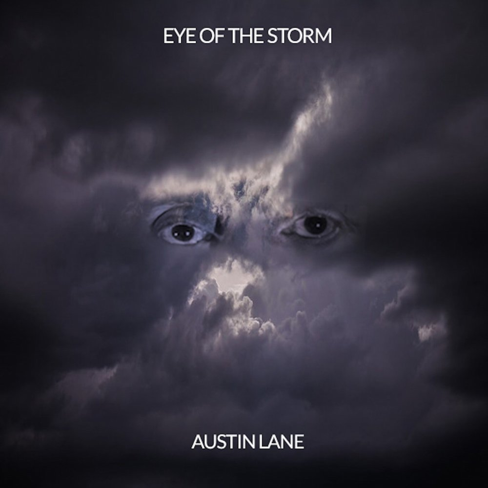 eye of the storm essay Ebscohost serves thousands of libraries with premium essays, articles and other content including in the eye of the storm.