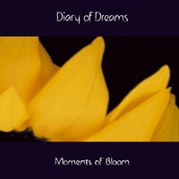 Moments of Bloom — Diary of Dreams