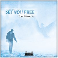 Set You Free — Activator