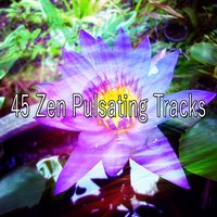 45 Zen Pulsating Tracks — Massage Therapy Music