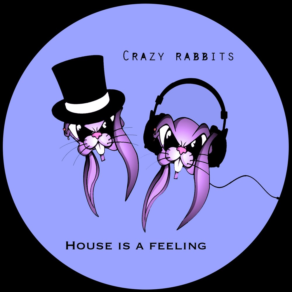 House is a feeling crazy rabbits for Crazy house music