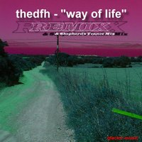 Way of Life - Remix — thedfh