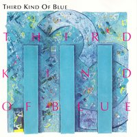 Third Kind of Blue — Third Kind of Blue