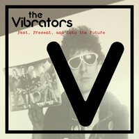 Past, Present and into the Future — The Vibrators