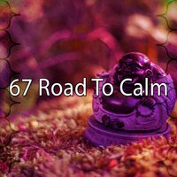 67 Road to Calm — Asian Zen Spa Music Meditation