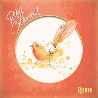 Robin — Riley Catherall