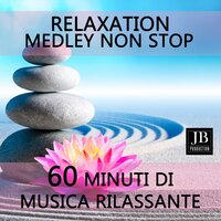 Relaxation Medley: First Approach / Anctartica / Conquest of Paradise / Chariots of Fire / Bon Voyage / Dream / 12 O'Clock / Dreams from Helena / Relax and Extasy / In My Mind forever / Love & Peace / Mon Chery Mon Amour / Savage Rain / Love Forever — Fly Project