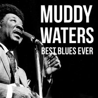 Best Blues Ever — Muddy Waters
