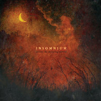 Above The Weeping World — Insomnium