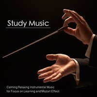 Study Music: Calming Relaxing Instrumental Music for Focus On Learning and Mozart Effect — Calm Music for Studying