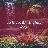 #5 Stress Relieving Songs for Zen Relaxation & Meditation — Zen Music Garden, Meditation, Relaxing Mindfulness Meditation Relaxation Maestro