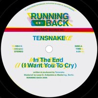 In The End (I Want You to Cry) — Tensnake