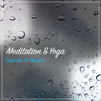 19 Loopable Meditation and Yoga Sounds of Nature — Rain Sounds & Nature Sounds, Heavy Rain Sounds, Rain, Thunder and Lightening Storm Sounds, Rain Sounds & Nature Sounds, Heavy Rain Sounds, Rain, Thunder and Lightening Storm Sounds