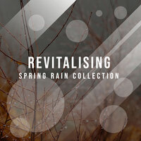 #12 Revitalising Spring Rain Collection — Ambient Nature White Noise, ASMR Rain Sounds, Rain Hard, ASMR Rain Sounds, Ambient Nature White Noise, Rain Hard