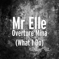 Overture Mina (What I Do) — Mr Elle, Eric G, Tswyza, Nemeson