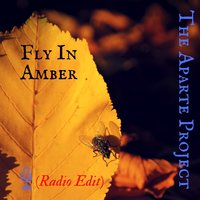 Fly in Amber — The Aparte Project