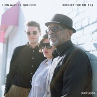 Orchids for the Sun / Hold Tight — Leon Ware