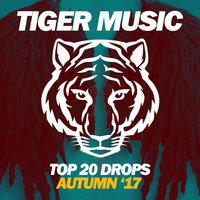 Top 20 Drops (Autumn '17) — сборник