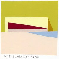 Face Blindness — Civic