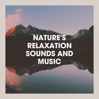 Nature's Relaxation Sounds and Music — Nature Sounds Nature Music, Rest & Relax Nature Sounds Artists, Sounds Of Nature : Thunderstorm, Rain, Nature Sounds Nature Music, Rest & Relax Nature Sounds Artists, Rain, Sounds Of Nature : Thunderstorm