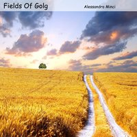 Fields of Gold — Alessandro Minci