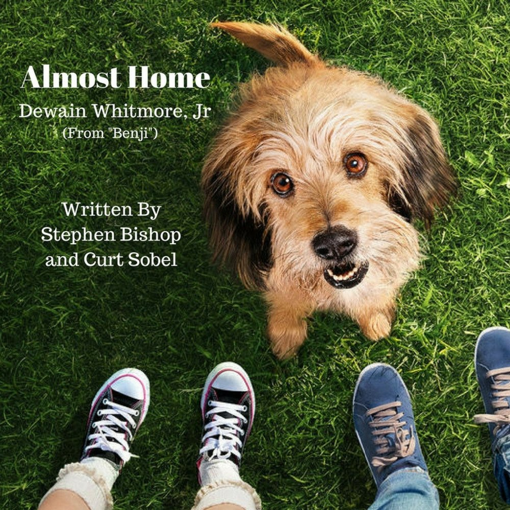 almost home Almost home dog rescue of ohio is an all volunteer, 501(c)(3) nonprofit organization that has rescued hundreds of dogs since our inception in 2003 100% of all donations and fees go directly to the care of our rescued dogs.