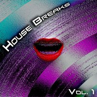House Breaks, Vol. 1 — сборник