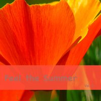 Feel the Summer, Vol. 2 — сборник