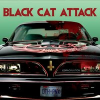 Edraculation — Black Cat Attack