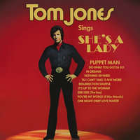 Tom Jones Sings She's A Lady — Tom Jones