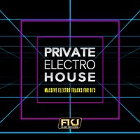 Private Electro House (Massive Electro Tracks for DJ's) — сборник