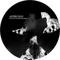 Why Not?! — Alter Ego, Tim DeLuxe