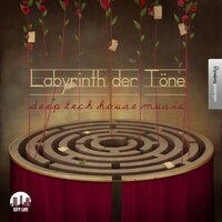 Labyrinth der Töne, Vol. 20 - Deep & Tech-House Music — сборник