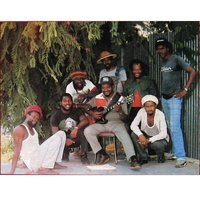 Rum Tree — The Roots Radics