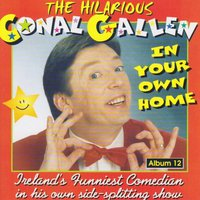 In Your Own Home — Conal Gallen