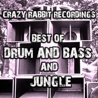 Best of DnB and Jungle 2017 — сборник