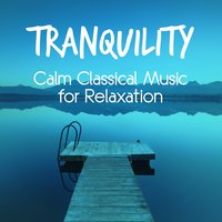 Tranquility: Calm Classical Music for Relaxation — James Horner, Michael Nyman, Richard D. James, Ludovico Einaudi, Yiruma, Martin Jacoby