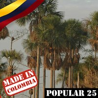 Made In Colombia / Popular / 25 — сборник