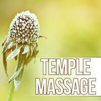 Temple Massage - Therapy for Stress Relief, Finest Chillout & Lounge Music, Massage, Reiki, Luxury Spa — SPA & Wellness Massage Masters