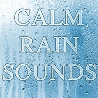 Calm Rain Sounds — Rain Sounds, Rain Sounds & Nature Sounds