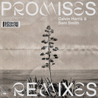Promises — Calvin Harris, Sam Smith