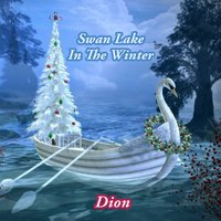 Swan Lake In The Winter — Dion