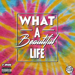 What A Beautiful Life — D. Webb