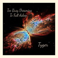 Too Busy Dreaming to Fall Asleep — Tyger