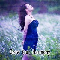 Grow Your Harmony — Tranquil Music Sound Of Nature, Healing Yoga Meditation Music Consort, Guided Meditation