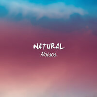 #10 Natural Noises for Guided Meditation & Relaxation — Guided Meditation Music Zone, Chinese Meditation and Relaxation, Deep Relaxation Meditation Academy, Guided Meditation Music Zone, Deep Relaxation Meditation Academy, Chinese Meditation and Relaxation